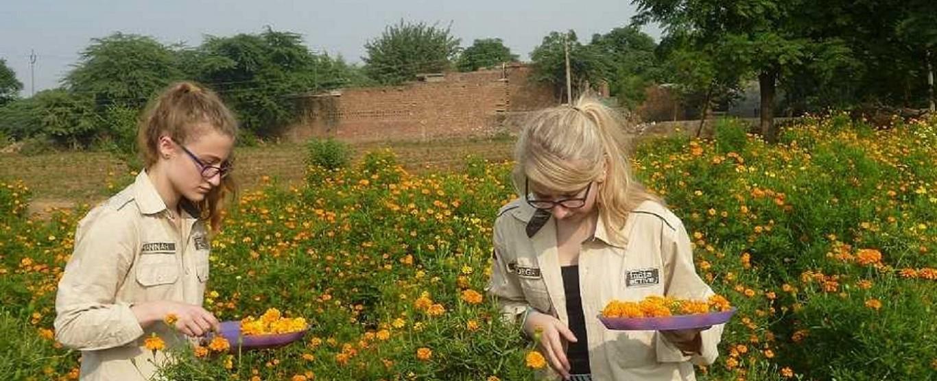 Village Experience Near Delhi