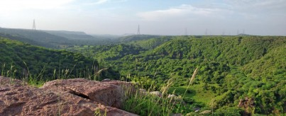 Mangar Bani Hill Forest