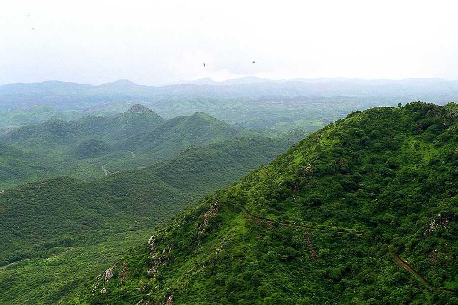 Aravalli_hills 501