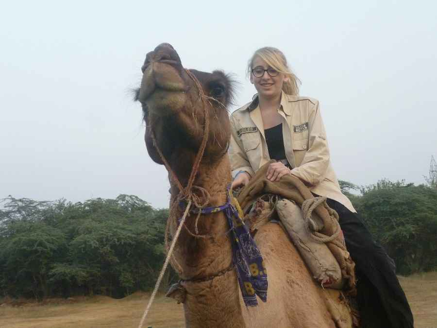 Camel_Riding 501
