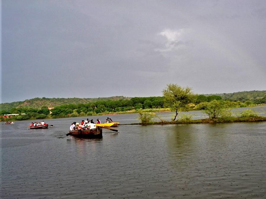 Mangar_Bani_Hill_Forest