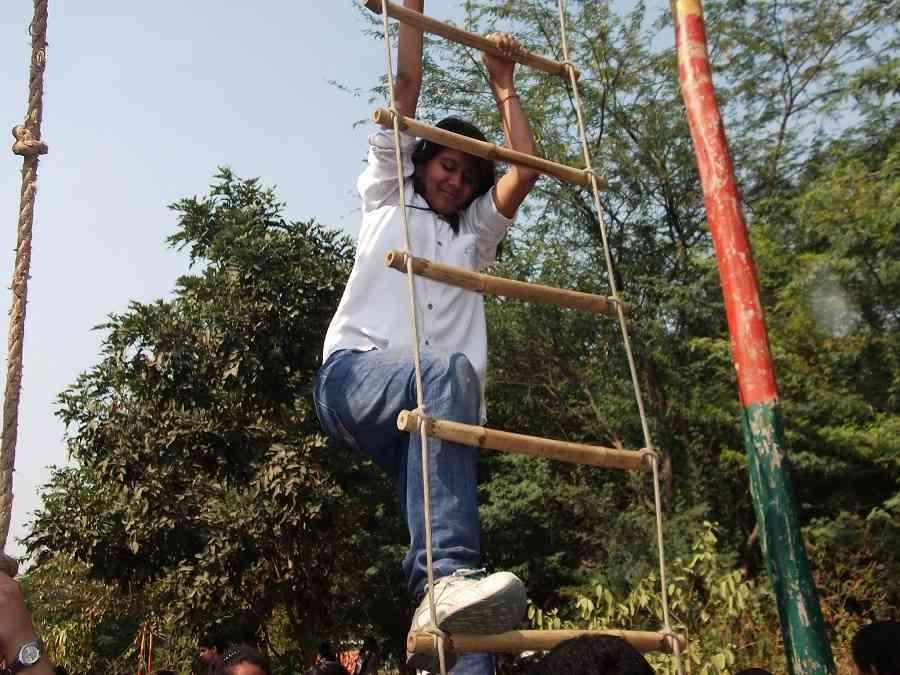 Ladder Climbimg 501