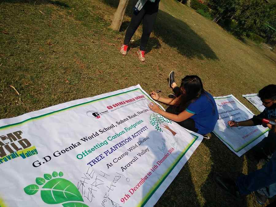 Tree_plantation 505