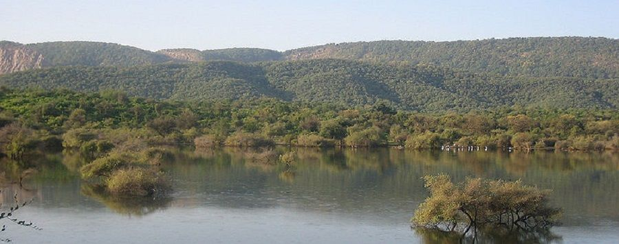 aravali_range_with_lake 502