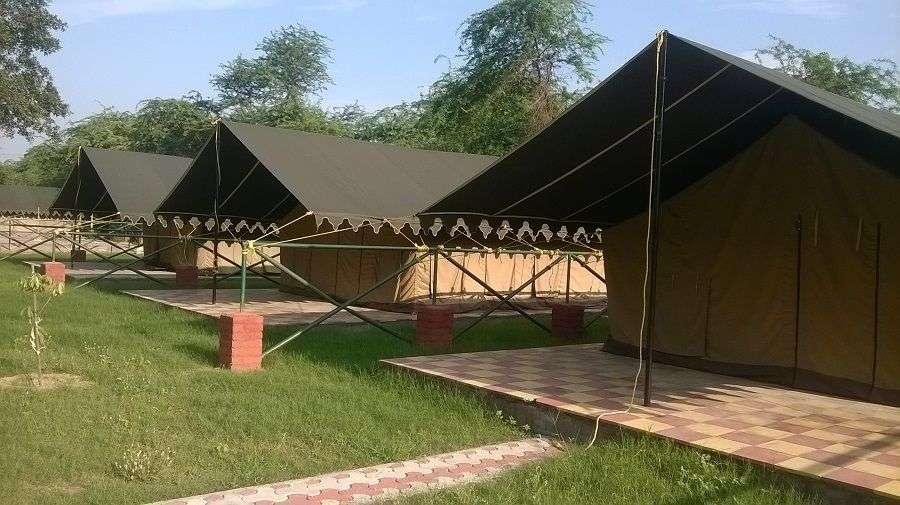 tent 305